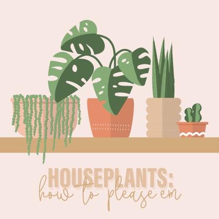Houseplants: How To Please 'em